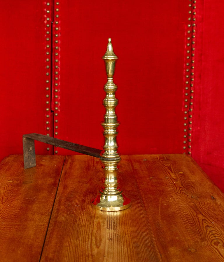 Early 20th Century French Brass Andirons For Sale 2