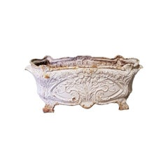 Early 20th Century French Cast Iron Art Nouveau Planter