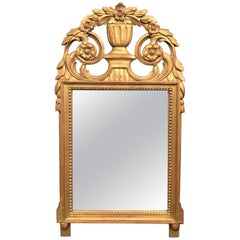 Early 20th Century French Hand Carved Louis XVI Style Giltwood Mirror