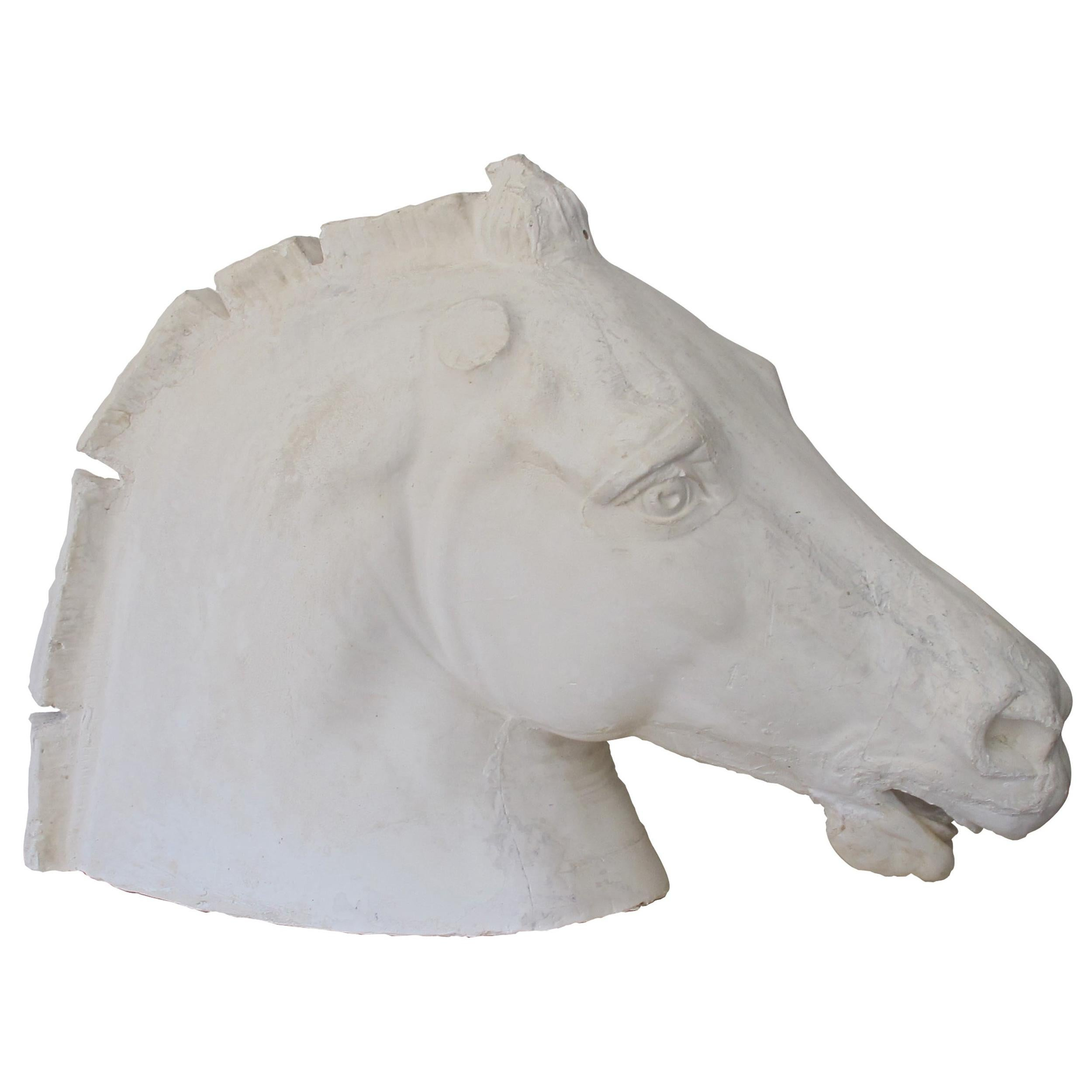 Early 20th Century French Life-Size Plaster Horse Head Inspired by The Parthenon