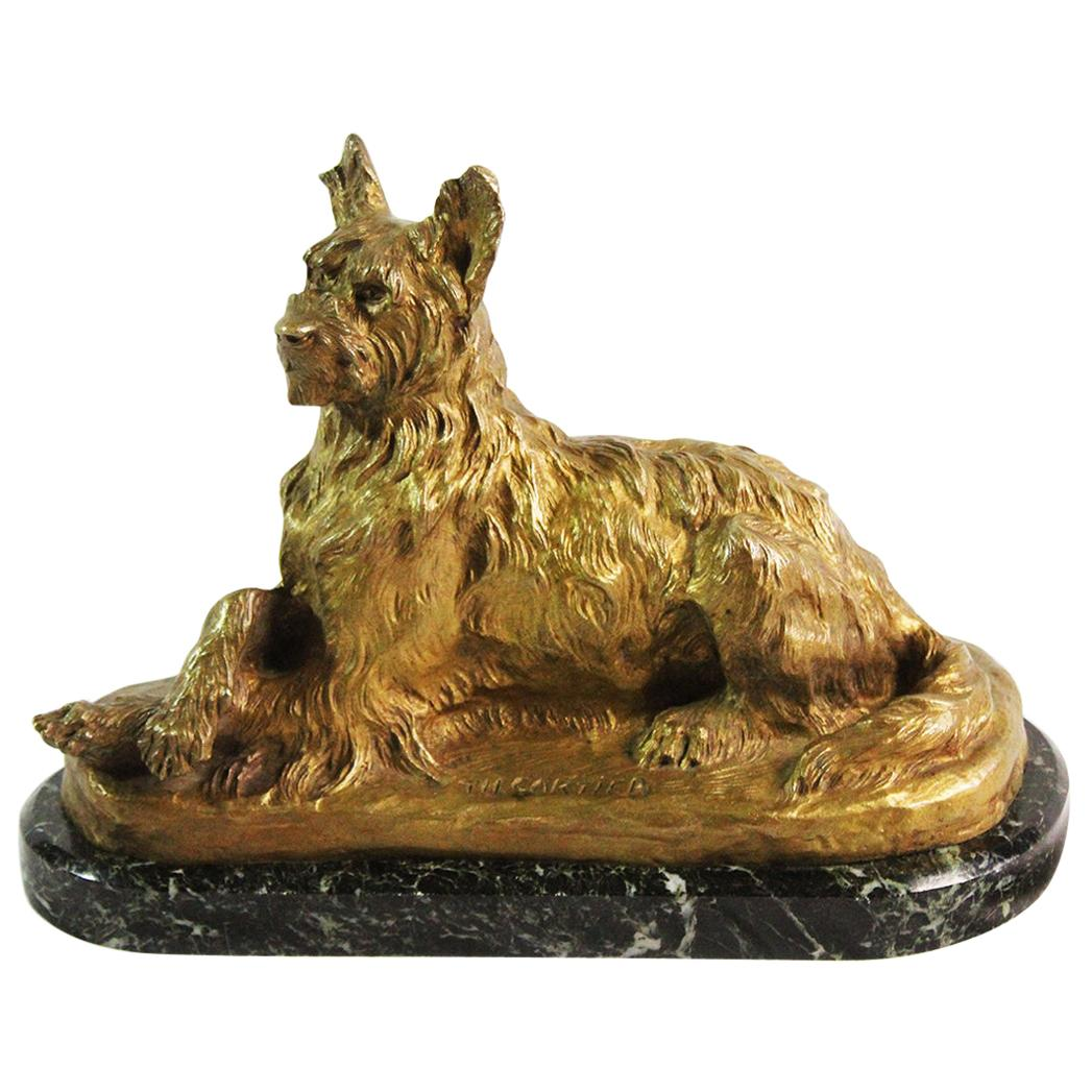 Early 20th Century Gold Patina Bronze Dog Signed by Thomas Cartier