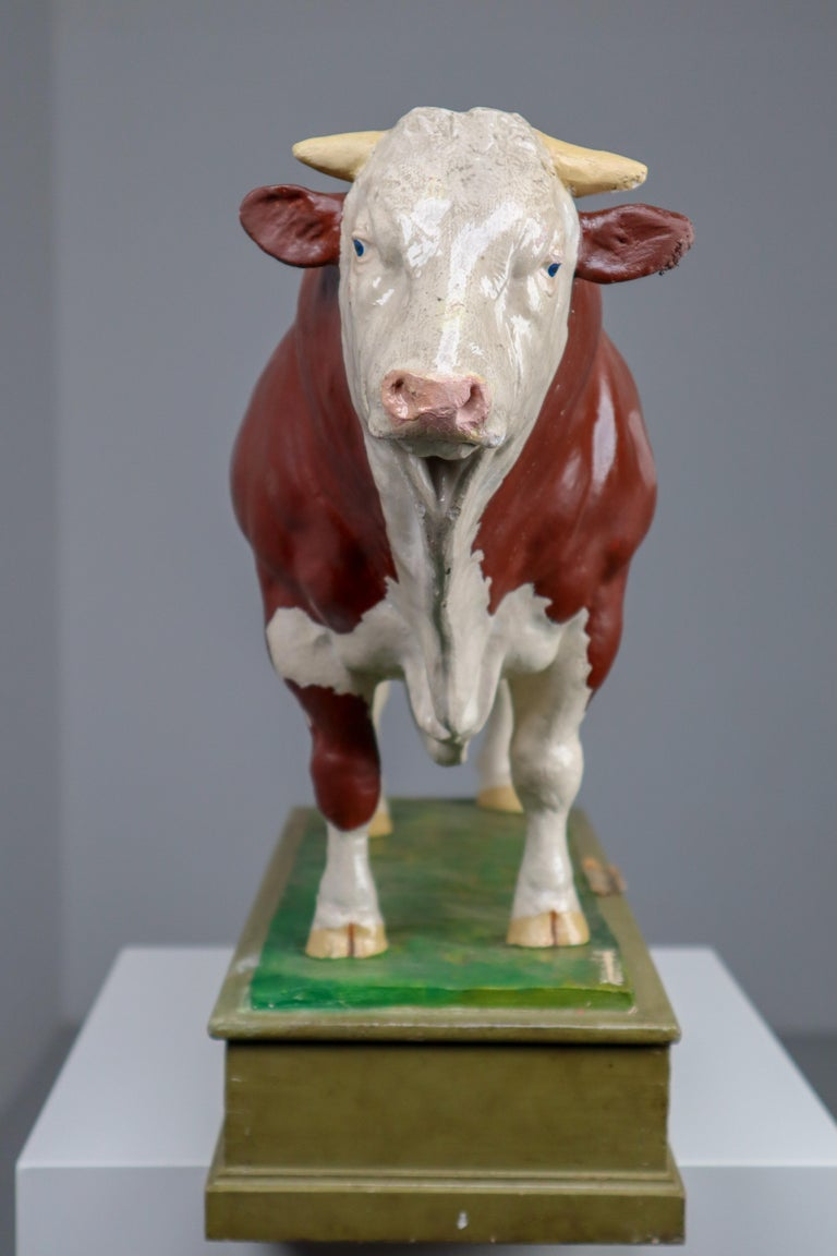 Early 20th Century Hand Painted Plaster Model of a Bull made in Czech Republic In Good Condition For Sale In Almelo, NL