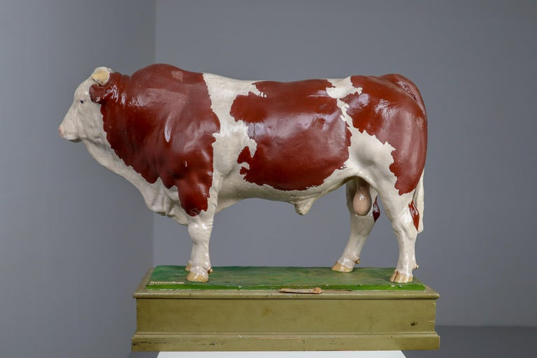Early 20th Century Hand Painted Plaster Model of a Bull made in Czech Republic For Sale 5