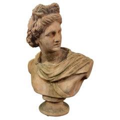 Early 20th Century Italian Renaissance Style Impruneta Terracotta Apollo Bust
