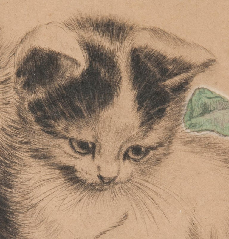 Early 20th Century Lithograph Young Cats by Meta PLÜCKEBAUM For Sale 5