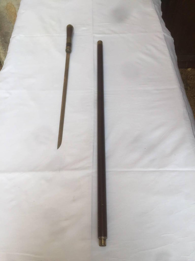 French Early 20th Century, Mahogany and Horn Dagger Cane For Sale