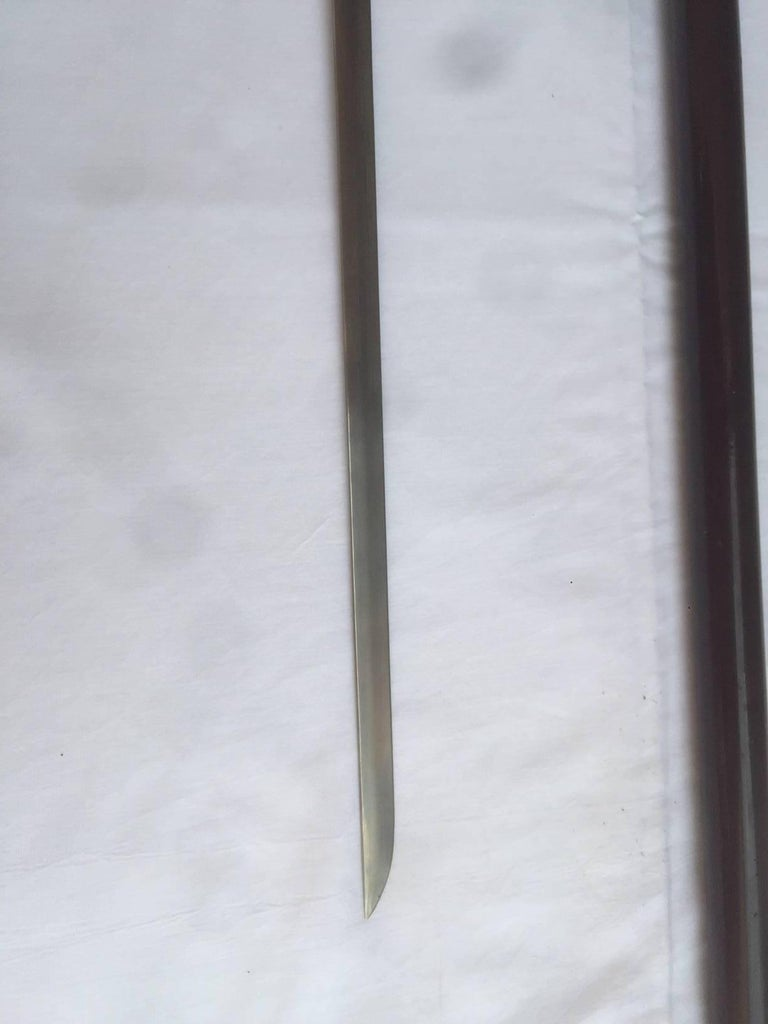 Early 20th Century, Mahogany and Horn Dagger Cane For Sale 1