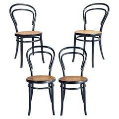 Early 20th Century Neapolitan Set Four Thonet Chairs Sautto & Liberale Ebonized
