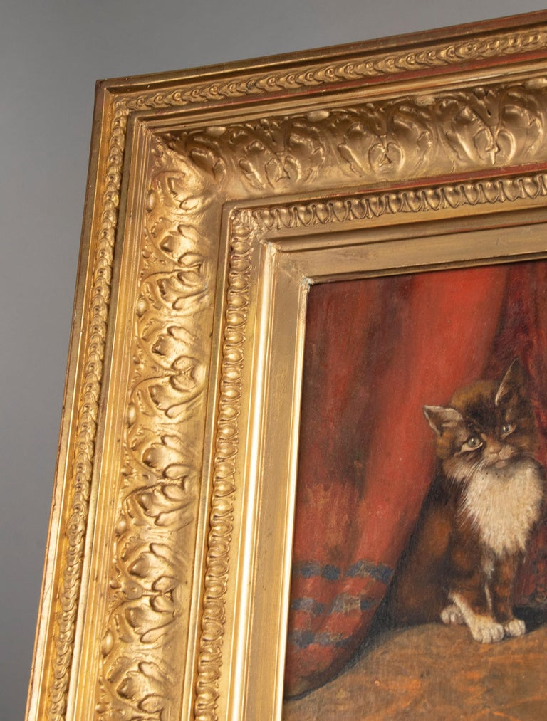 Early 20th Century Oil Painting Young Cat/Kitten by Léonard 1