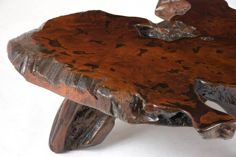 Wood Organic Root Coffee Table For Sale