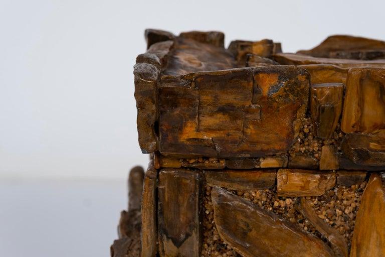 Early 20th Century Petrified Wood Folk Art Box For Sale 7