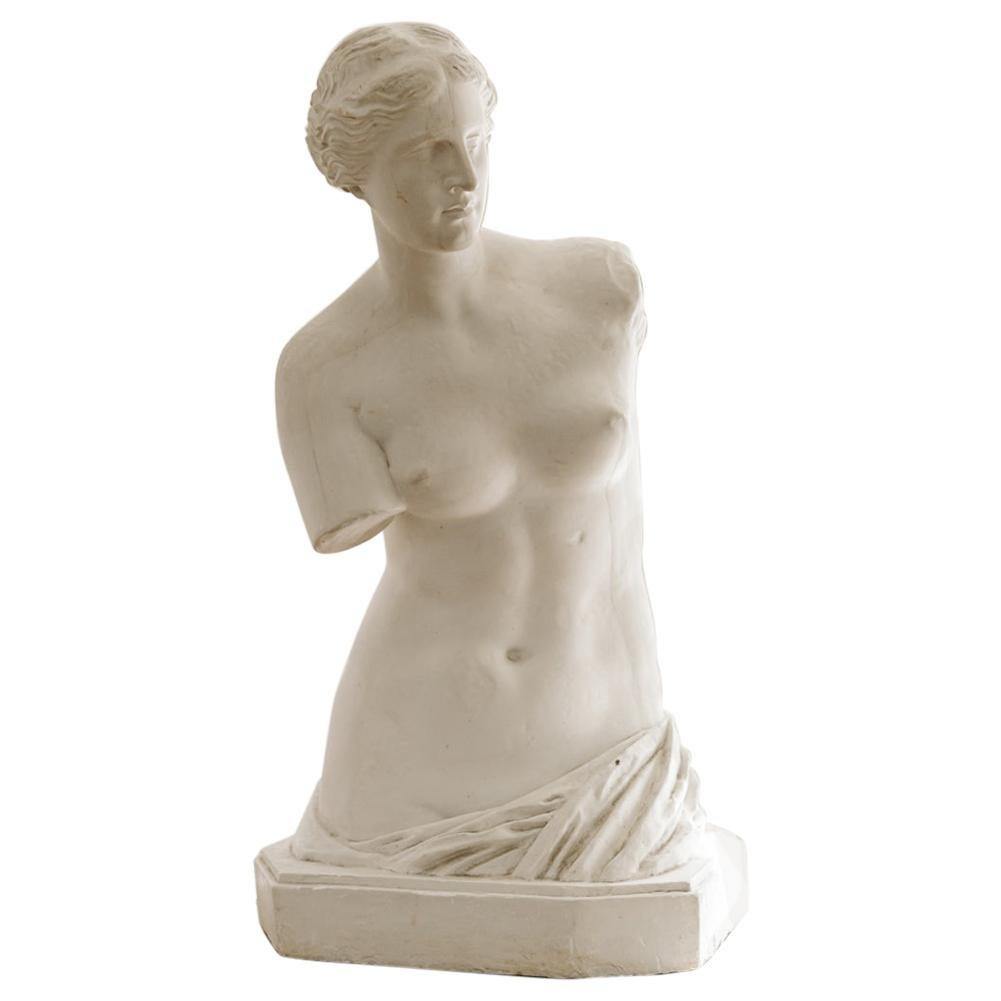 Early 20th Century Plaster Statue, Venus de Milo