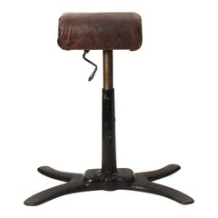 Early 20th Century Pommel Horse