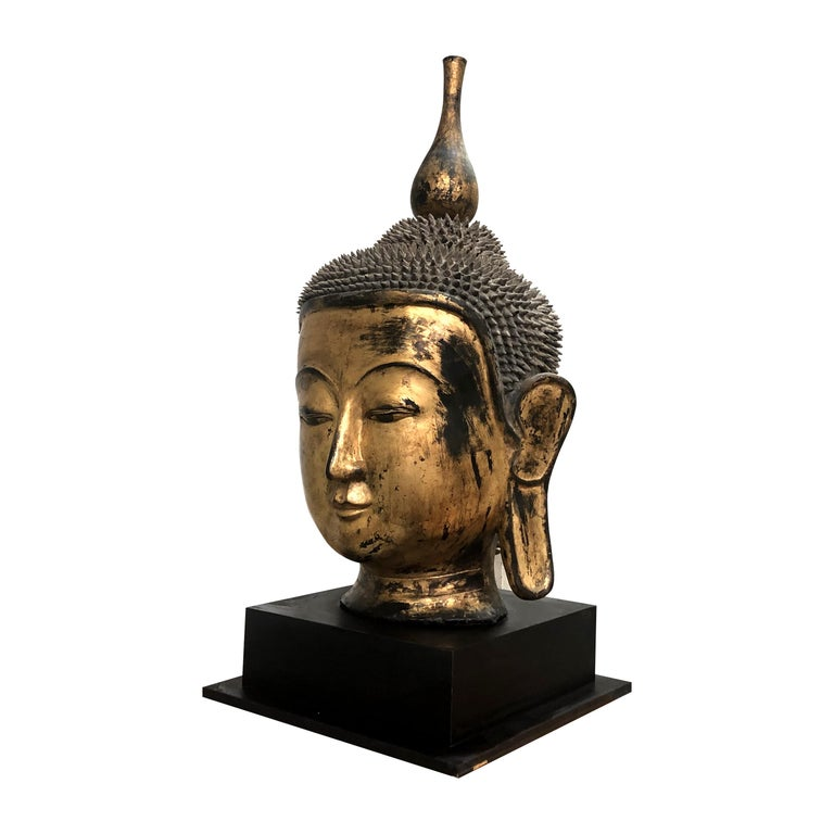 Other Early 20th Century Shan Burmese Large Dry Lacquer Gilt Buddha Head Sculpture For Sale