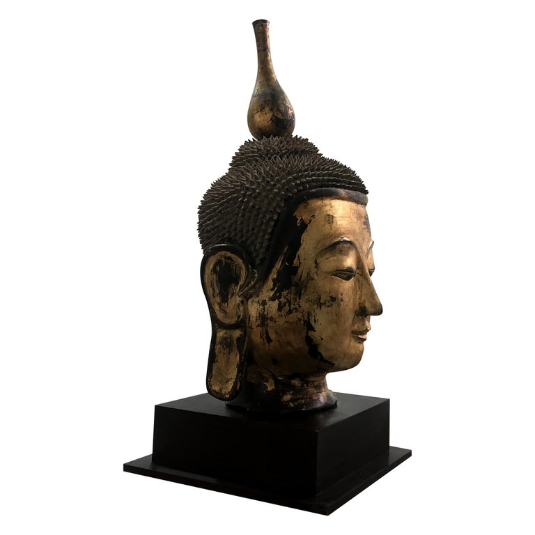 Southeast Asian Early 20th Century Shan Burmese Large Dry Lacquer Gilt Buddha Head Sculpture For Sale
