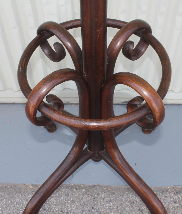 Wood Early 20th Century Bentwood Hat and Coat Rack For Sale