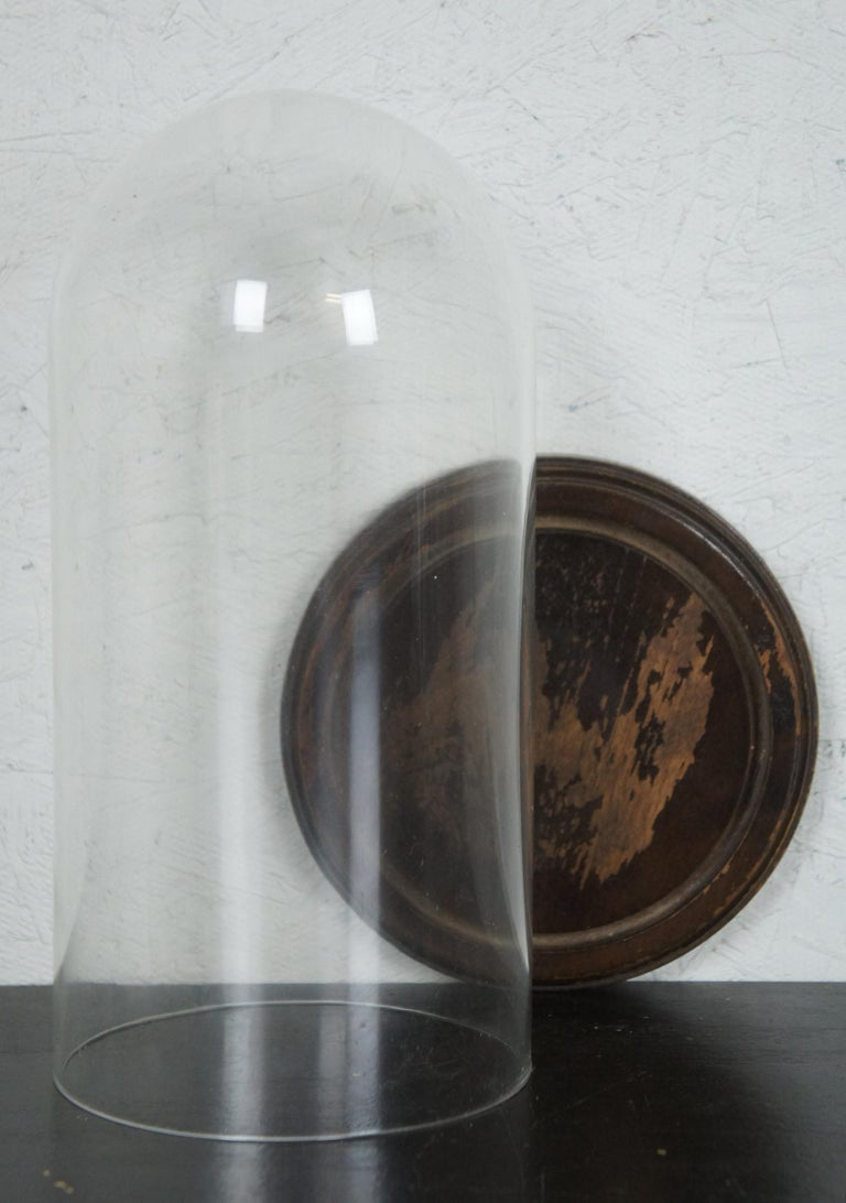 Early German Antique Composition Black Cat Candy Container Halloween Xmas In Good Condition For Sale In Dayton, OH