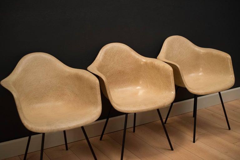 Mid-Century Modern Early Herman Miller Fiberglass Eames Shell Armchair by Zenith For Sale