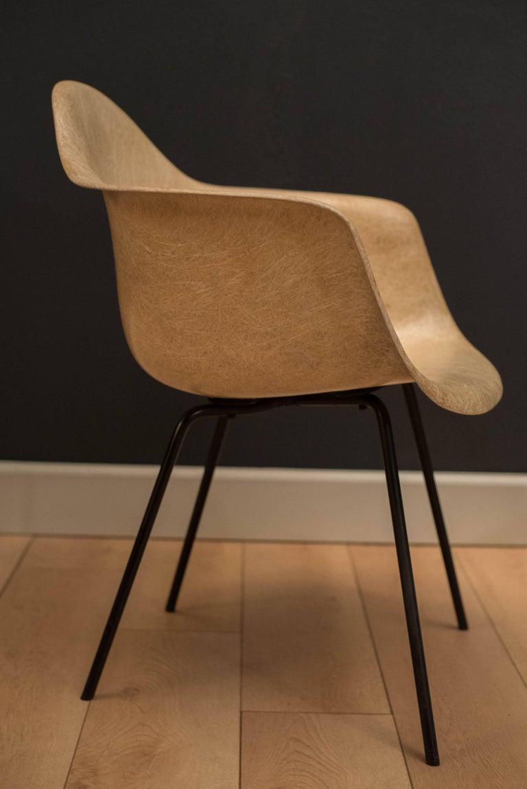 Early Herman Miller Fiberglass Eames Shell Armchair by Zenith For Sale 1