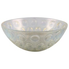 """Early René Lalique """"Asters"""" Bowl in Art Glass, Dated Before 1945"""