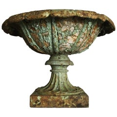 Early Victorian Cast Iron Urn