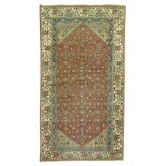 Earth Color Rust Green Blue Herati Wool Oriental Persian Throw Rug