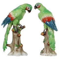 Edme Samson Porcelain Parrots on Trunks in Green