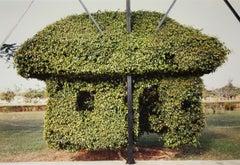 Topiary, Merida, Yucatan, Mexico, 1998