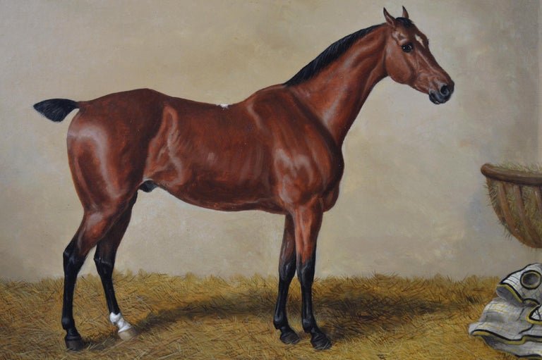 19th Century sporting horse portrait oil painting of a bay hunter  - Victorian Painting by Edward Benjamin Herberte