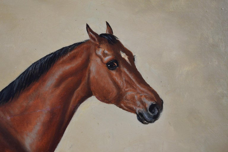 19th Century sporting horse portrait oil painting of a bay hunter  - Brown Animal Painting by Edward Benjamin Herberte