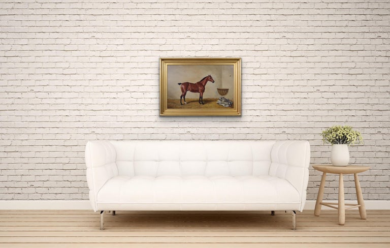 19th Century sporting horse portrait oil painting of a bay hunter  For Sale 2