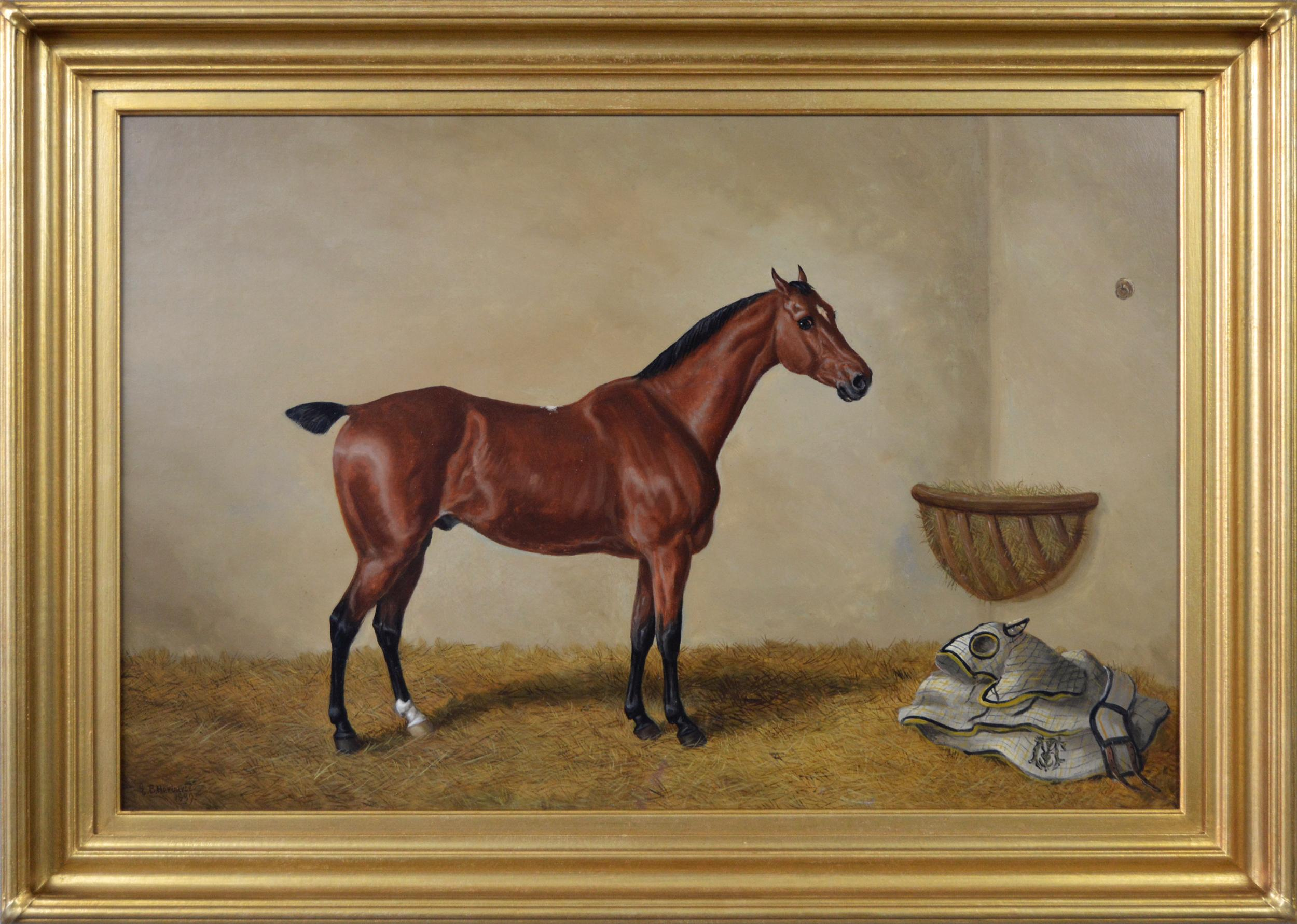 19th Century sporting horse portrait oil painting of a bay hunter