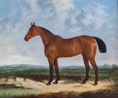 A bay horse in a coastal landscape