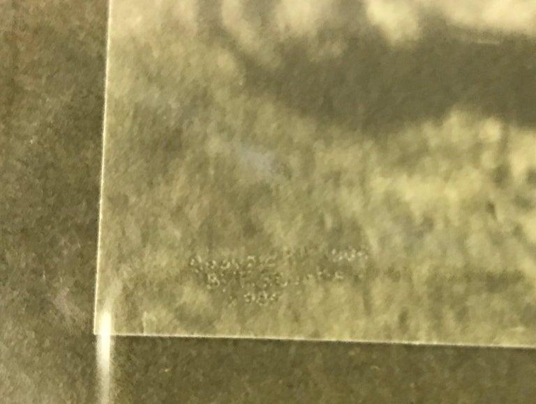 Paper Edward S. Curtis Original Signed Stamped Platinum Print the Vanishing Race, 1904