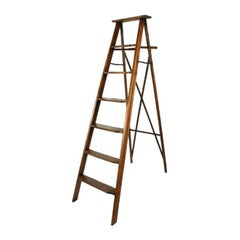 Edwardian Oak Library Ladders, 20th Century