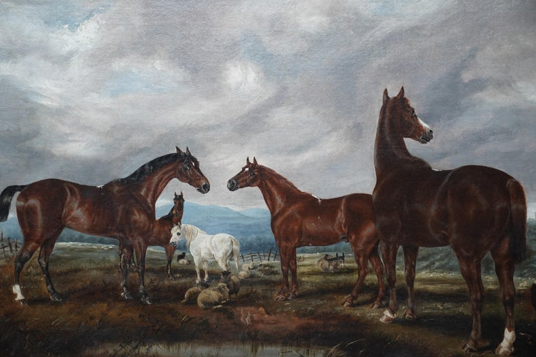 This lovely British Victorian oil on canvas on board painting is by noted animal artist Edwin Brown. Painted circa 1880 the composition is of several beautiful horses in the foreground along with sheep. Brown has perfectly captured their anatomy and