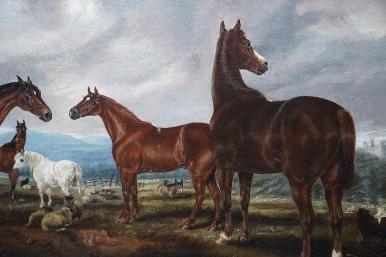Horses in Landscape - British Victorian art equine animal portrait oil painting For Sale 1