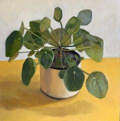 Houseplant with Yellow