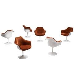 Eero Saarinen Set of Six 'Tulip' Dining Chairs in Terracotta Velvet