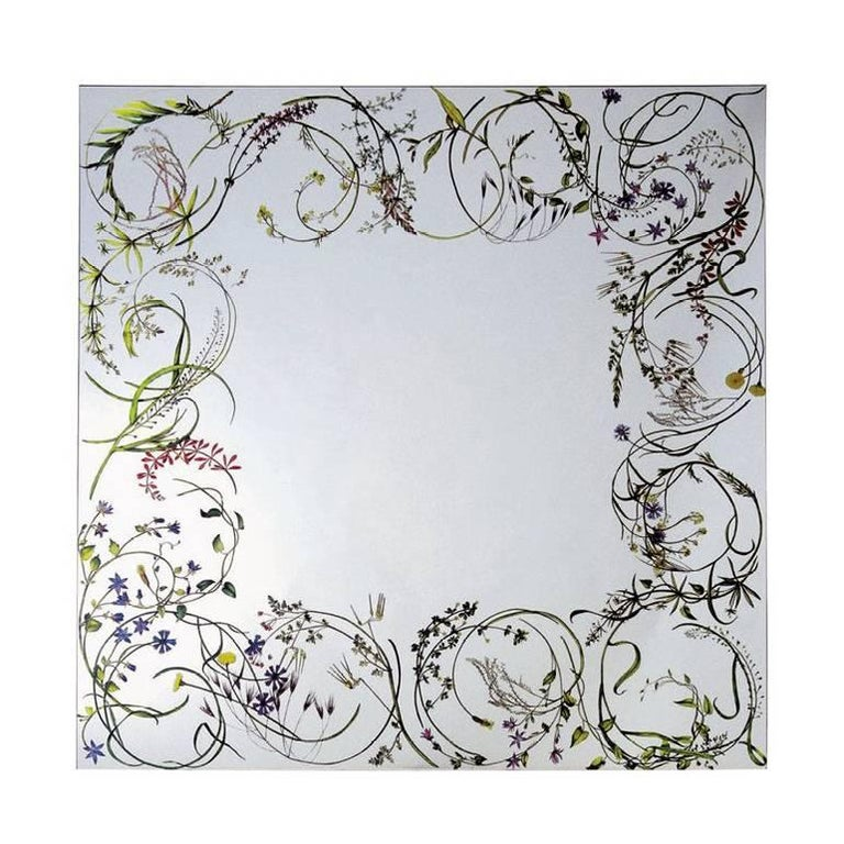 Egeso Wild Herbs Mirror by Bertocco & Locatelli for Driade For Sale