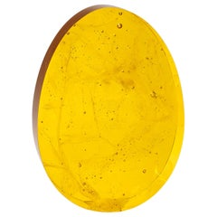 Egg Born of Glass Yellow 'Eldor'