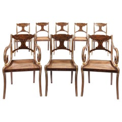 Eight 19th Century Regency Faux Rosewood Dining Chairs with Two Armchairs