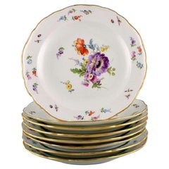 Eight Antique Meissen Plates in Porcelain with Hand-Painted Flowers