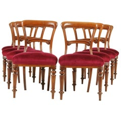 Antique Dining Chairs, Victorian Chairs, Set of 8 Chairs, Scotland 1860, B1599