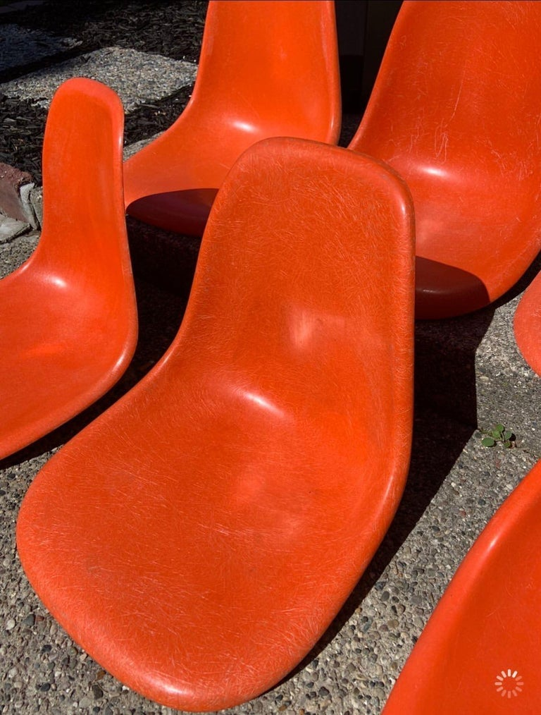 Eight Herman Miller Eames dining chairs in red orange. New dowel bases in dark stain legs. Shells in good condition.