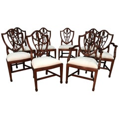 Eight Mahogany Shieldback Dining Chairs by Leighton Hall
