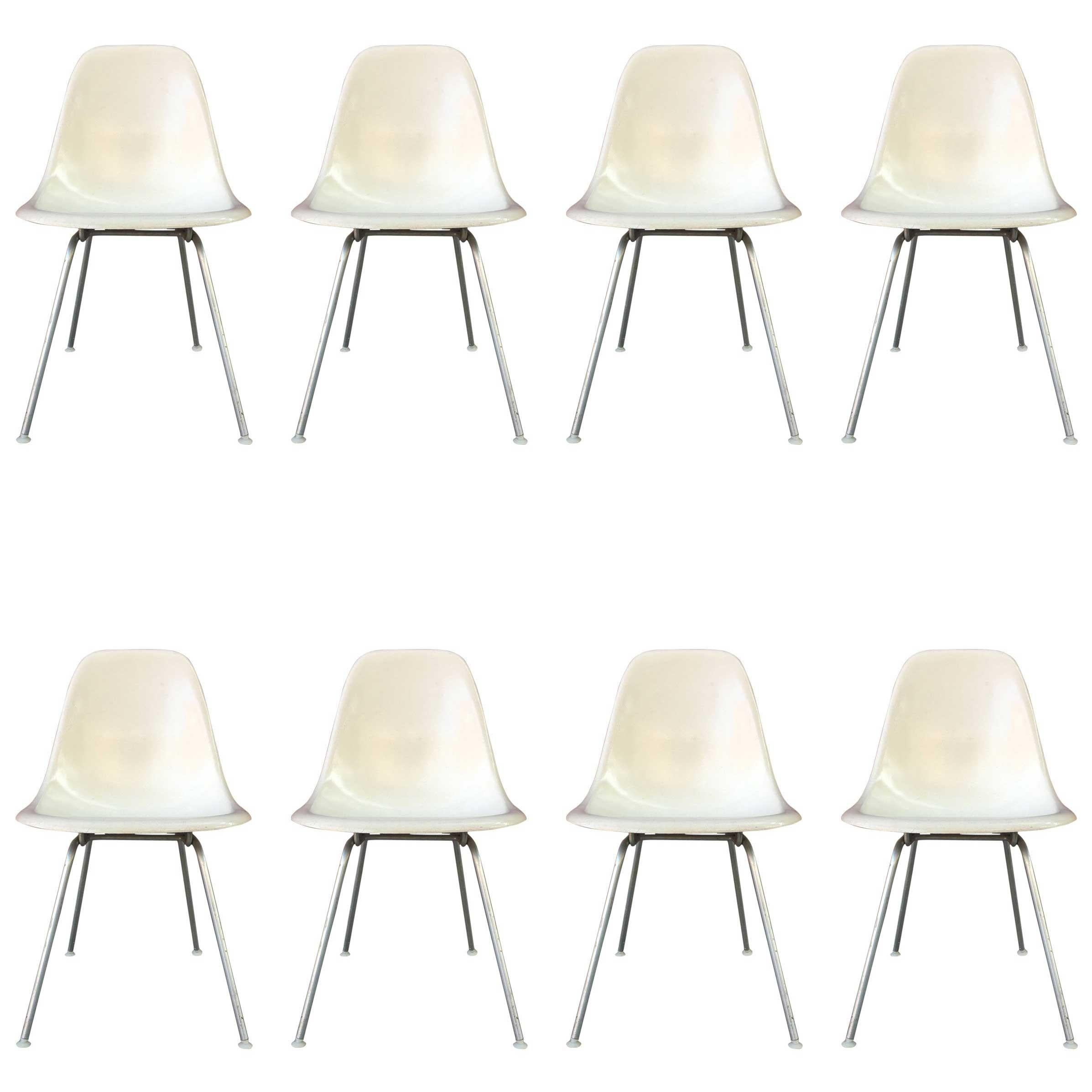 Eight Parchment Herman Miller Eames Dining Chairs