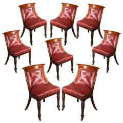 Eight Regency Tub Chairs in Old Leather