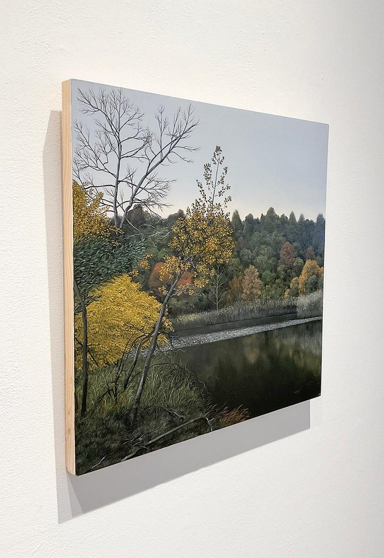 Indifferent Ponds (Photorealist Landscape Painting of the Hudson River Valley) For Sale 2