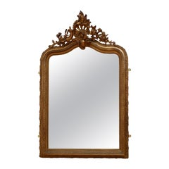 Elaborate 19th Century Giltwood Mirror